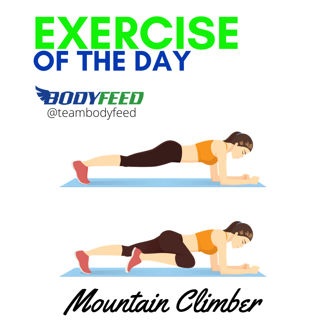 Exercise Of The Day - Mountain Climber