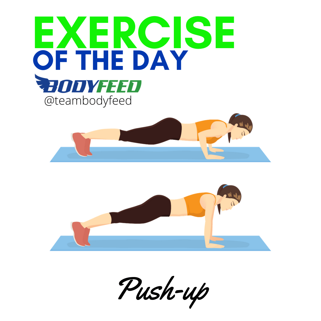 Exercise Of The Day - PushUps