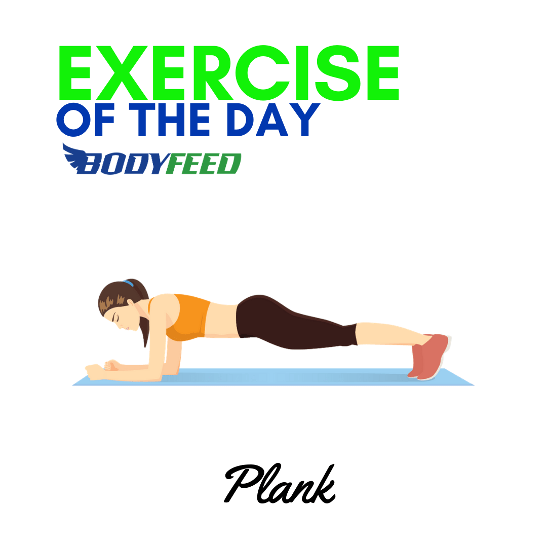 Exercise Of The Day - Planks